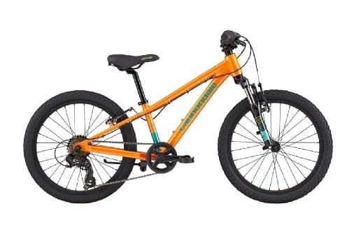 Cannondale Trail 20 Kids Bike